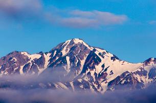 朝の白馬連峰の写真素材 [FYI02659515]