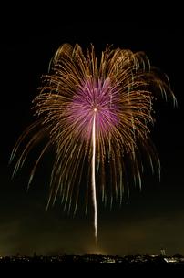 世田谷区たまがわ花火大会 昇り銀朴付万華鏡の花の写真素材 [FYI02659827]