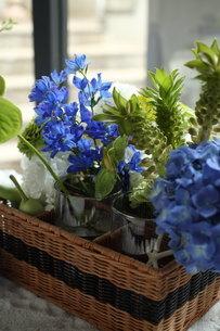 青い花夏のフラワーアレンジメントの写真素材 [FYI02660161]