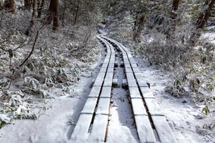 冬の志賀高原三角池付近の散策道の写真素材 [FYI02660244]