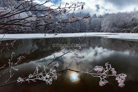冬の志賀高原,三角池の雪景色の写真素材 [FYI02660292]