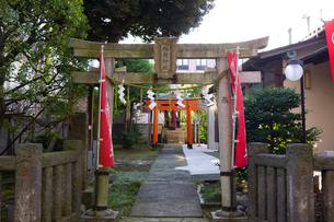 伊富稲荷神社の写真素材 [FYI02660345]