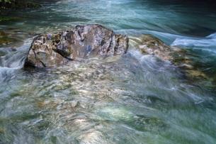 円原川の伏流水の流れの写真素材 [FYI02660413]