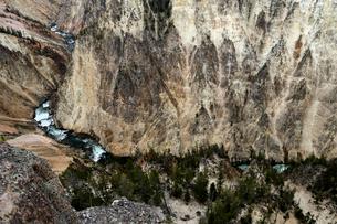 イエローストーン国立公園のキャニオンカントリーのグランドビューポイントからイエローストーンリバーの展の写真素材 [FYI02660975]