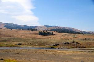 イエローストーン国立公園のルーズベルトカントリーのラマバレーの写真素材 [FYI02660995]