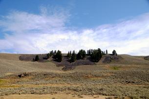 イエローストーン国立公園のルーズベルトカントリーのラマバレーの写真素材 [FYI02660997]