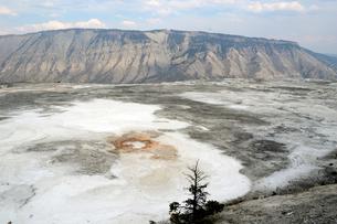 イエローストーン国立公園のマンモスカントリーのアッパーテラスの写真素材 [FYI02661051]