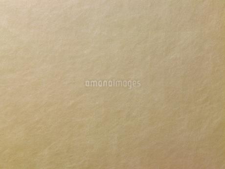 ゴールドの革の写真素材 [FYI02661119]