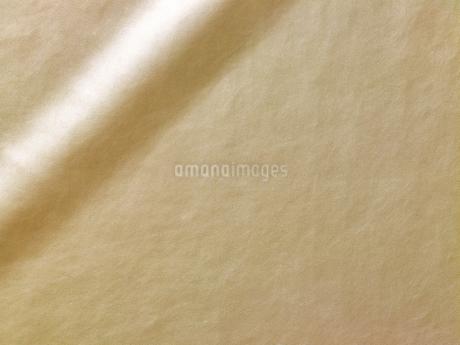 ゴールドの革の写真素材 [FYI02661136]