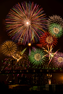 第27回東京湾大華火祭(2015年)の写真素材 [FYI02661180]