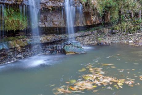 黒滝と回る木の葉の写真素材 [FYI02661339]