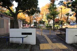 恵比寿公園の写真素材 [FYI02661364]