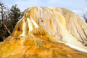 イエローストーン国立公園のマンモスカントリーのアッパーテラスの写真素材 [FYI02661436]