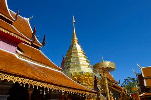 寺院のワット・プラ・タート・ドイ・ステープの金色塔の写真素材 [FYI02661622]