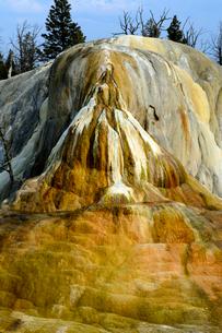 イエローストーン国立公園のマンモスカントリーのアッパーテラスのオレンジスプリングマウンドの写真素材 [FYI02661691]