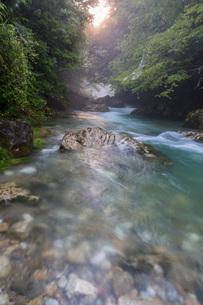 円原川の伏流水の流れの写真素材 [FYI02662005]
