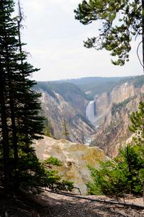 イエローストーン国立公園のキャニオンカントリーのアーティストポイントからのロウアー滝を望むの写真素材 [FYI02662068]