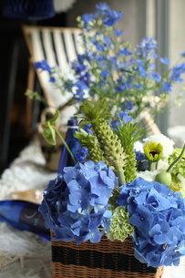 青い花夏のフラワーアレンジメントの写真素材 [FYI02662337]