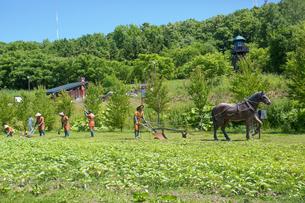 博物館網走監獄の農作業風景の写真素材 [FYI02662410]