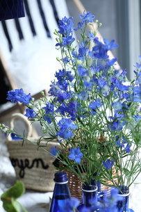 青い花夏のフラワーアレンジメントの写真素材 [FYI02662412]