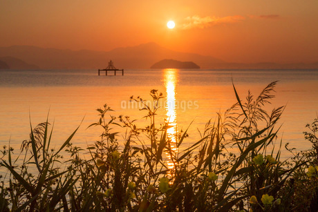 滋賀県 琵琶湖の朝焼けの写真素材 [FYI02662469]