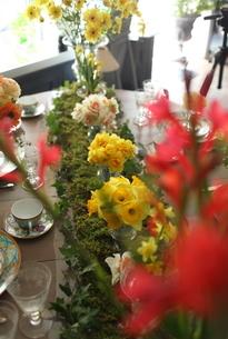 春の花のテーブルコーディネートの写真素材 [FYI02662525]