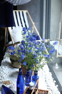 青い花夏のフラワーアレンジメントの写真素材 [FYI02662551]