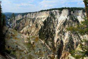イエローストーン国立公園のキャニオンカントリーのアーティストポイントからロウアー滝の展望の写真素材 [FYI02662569]