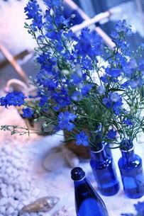 青い花夏のフラワーアレンジメントの写真素材 [FYI02662680]