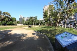 港区立どんぐり児童遊園の写真素材 [FYI02662754]