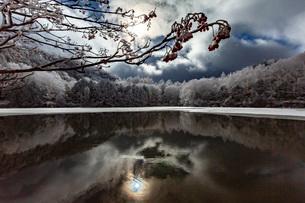 冬の志賀高原,三角池の雪景色の写真素材 [FYI02662784]
