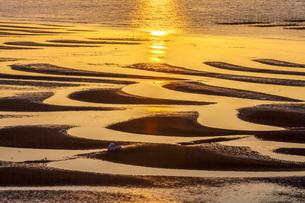 御輿来海岸の砂紋と夕日の写真素材 [FYI02662830]
