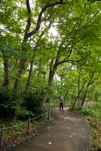 杉並区立三井の森公園の写真素材 [FYI02662971]