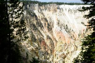 イエローストーン国立公園のキャニオンカントリーのアーティストポイントからの展望の写真素材 [FYI02663013]