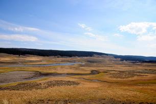 イエローストーン国立公園のキャニオンカントリーのヘイデンバレーの展望の写真素材 [FYI02663014]