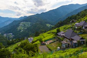 東祖谷の落合集落から見る風景の写真素材 [FYI02663025]