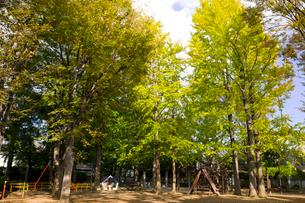 杉並区立西永福公園の写真素材 [FYI02663332]