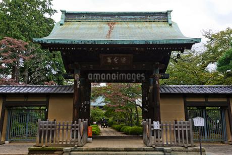 豪徳寺の写真素材 [FYI02663377]