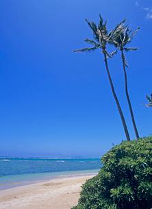 裏オアフのビーチ ハワイの写真素材 [FYI02663669]