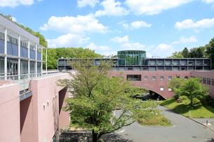 東京造形大学の写真素材 [FYI02663789]