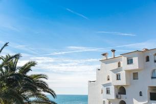白い集合住宅とヤシの葉越しに青い空と地中海を望むの写真素材 [FYI02663979]