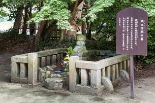 織田信孝の墓の写真素材 [FYI02664024]