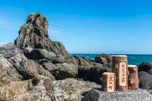 室戸岬の乱礁遊歩道の奇岩ビシャゴ岩の写真素材 [FYI02664026]