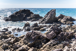 室戸岬の乱礁遊歩道から見る海岸の岩礁風景の写真素材 [FYI02664030]