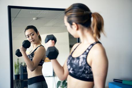 ジムで鏡を見ながら筋トレをしている女性の写真素材 [FYI02664197]