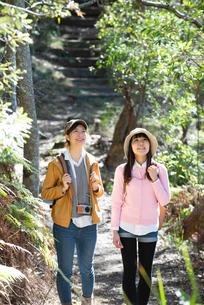 森の中をハイキングしている女性2人の写真素材 [FYI02664328]