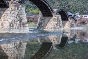 川面に映る錦帯橋の写真素材 [FYI02664363]