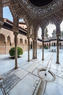柱廊に囲まれたライオンの中庭を望むの写真素材 [FYI02664396]