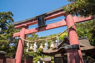 白鬚神社鳥居越しに境内を望むの写真素材 [FYI02664432]