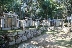 於大の方菩提寺の龍渓山久松寺洞雲院の墓地の写真素材 [FYI02664461]